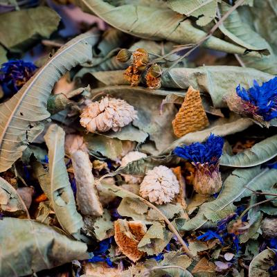 TISANE LA TRADITIONNELLE BIO 25G - DU SOIR